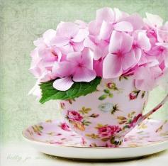TEA & TESTIMONIES-A NICE CUP of TEA & A SLICE OF CAKE