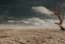 desert-279862_640