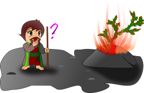 burning-36884_640
