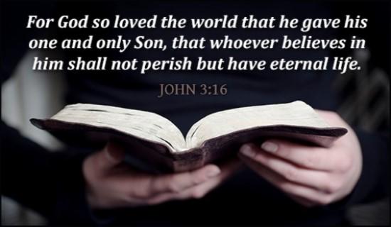 15927-john-3-16-holding-bible